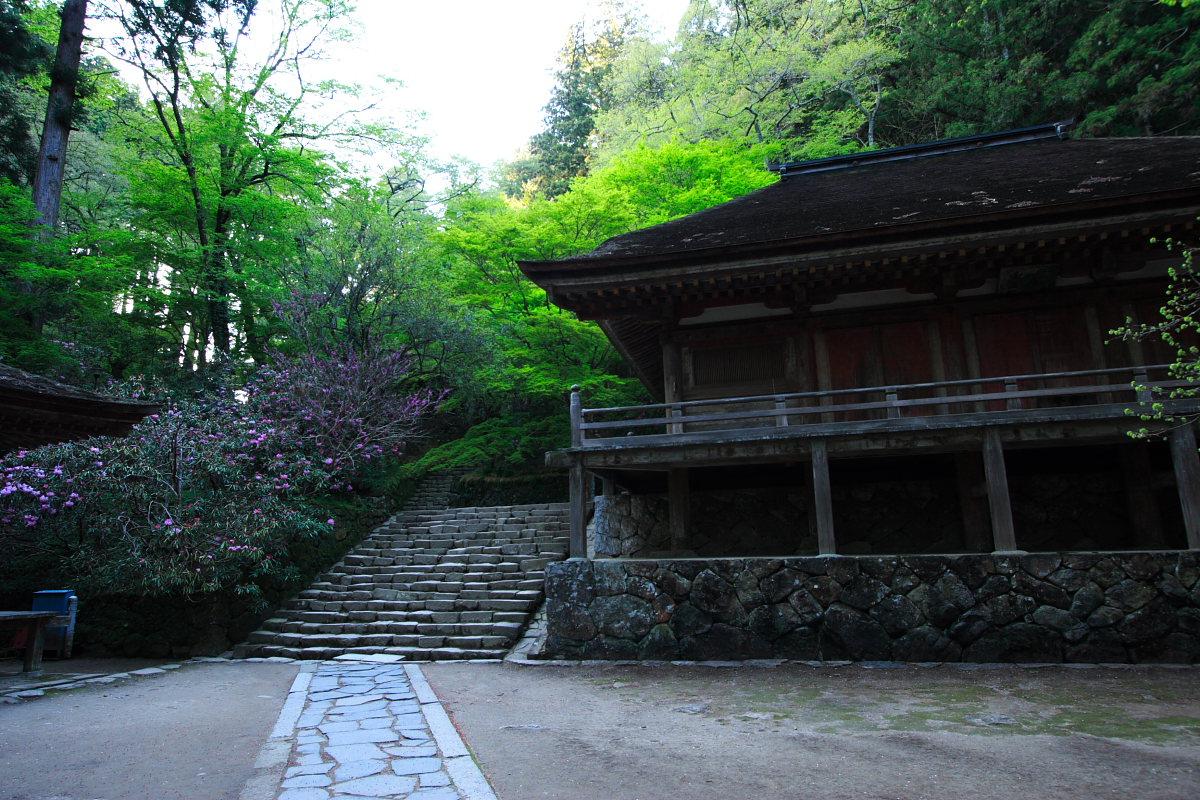 奈良 女人高野 室生寺 2_f0021869_23335835.jpg