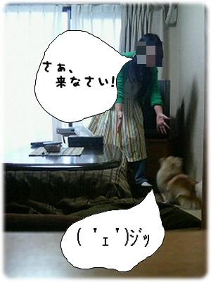 b0078073_22192425.jpg