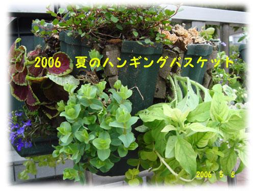 f0057006_151628.jpg