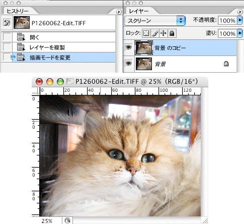 f0075955_18424561.jpg