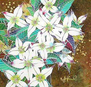 花が咲く_b0073937_2103692.jpg