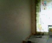 d0023061_13535442.jpg