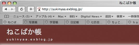 Safariのタブ_f0077521_6322057.jpg