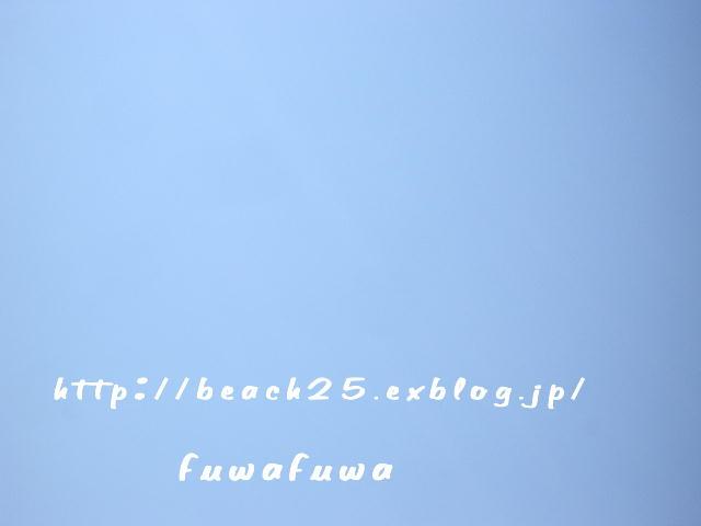 b0088039_23485056.jpg