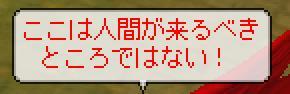 b0027699_6355939.jpg