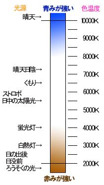 写真のいろは 色にも温度があります_f0100215_21191596.jpg