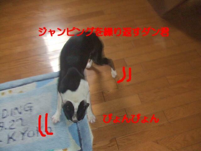 f0059334_8304529.jpg
