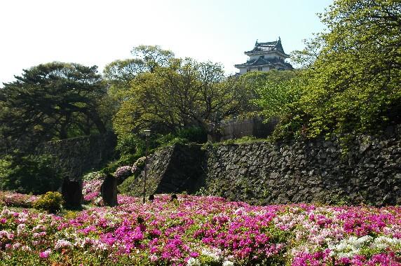 和歌山城とつつじ_b0093754_21304178.jpg