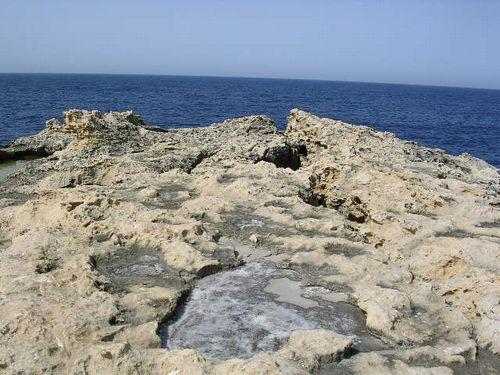 南イタリア(7) 世界遺産の島マルタとピアスデビュー_f0060461_20583947.jpg
