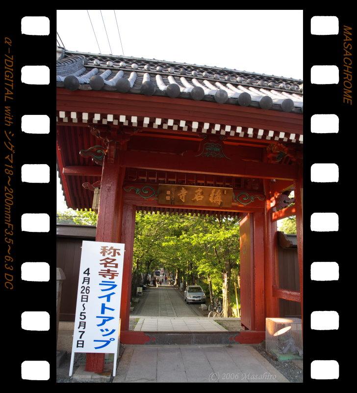 横浜の休日(5/6)_f0063363_19384976.jpg
