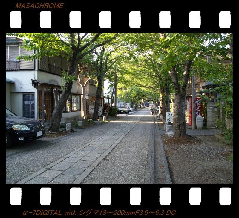横浜の休日(5/6)_f0063363_19392270.jpg