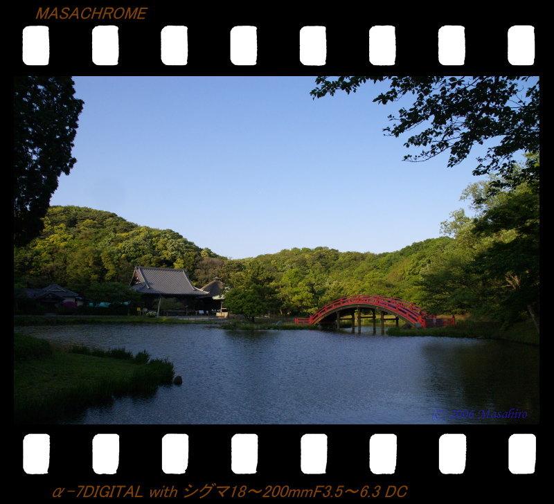 横浜の休日(5/6)_f0063363_19395087.jpg