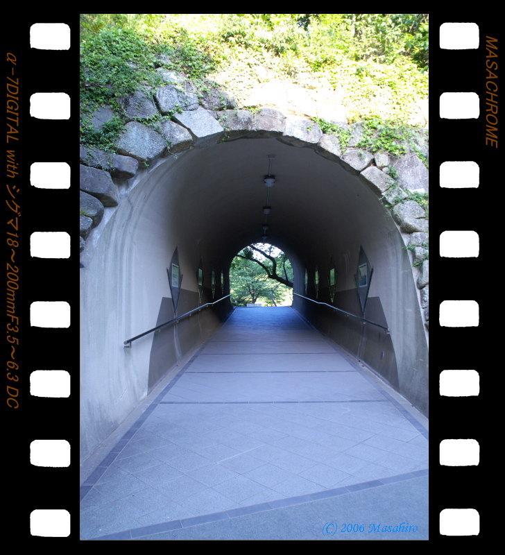 横浜の休日(5/6)_f0063363_19413583.jpg