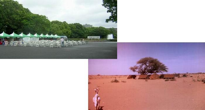 上野公園のグリーンのテントとキャンプの病人用テント_f0045090_1385254.jpg