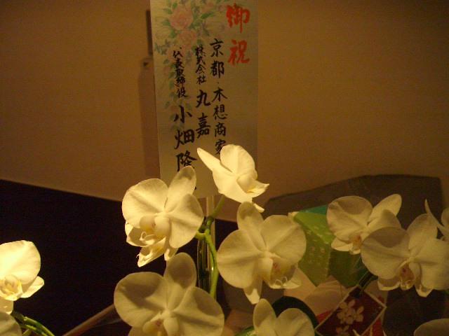 京町家の魅力とは・・・?_f0036534_23311942.jpg