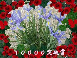b0089967_19185947.jpg