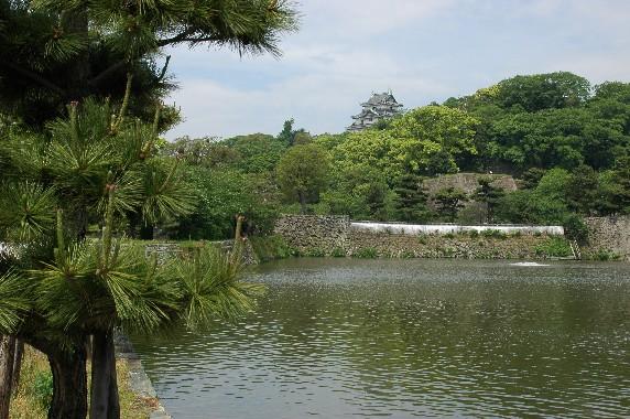和歌山城  1_b0093754_084673.jpg