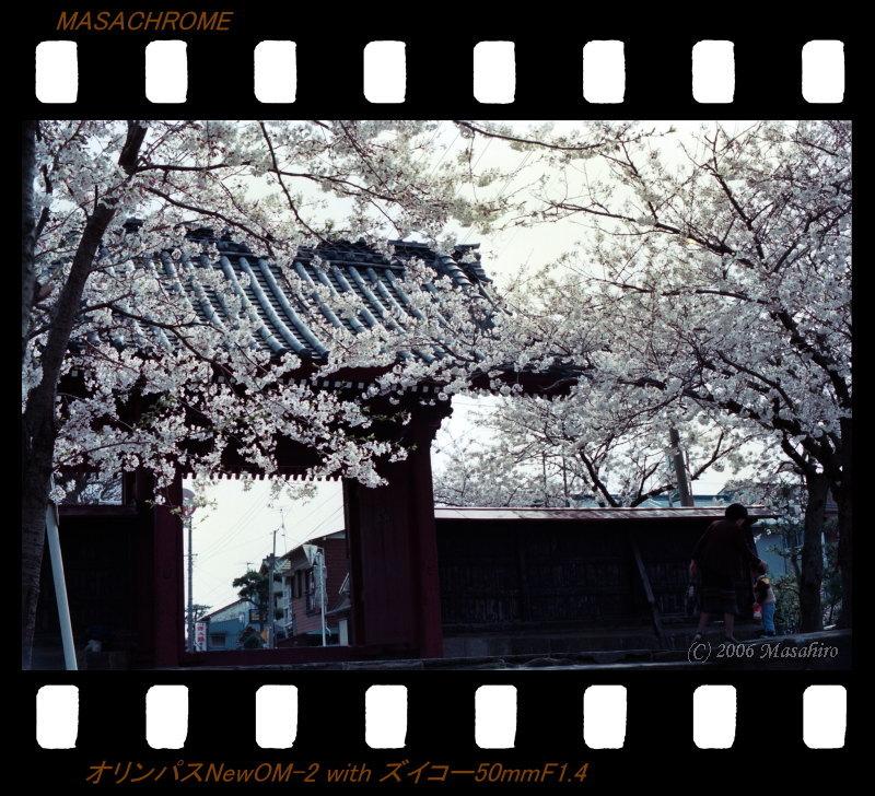 横浜の休日(番外編)_f0063363_21404552.jpg