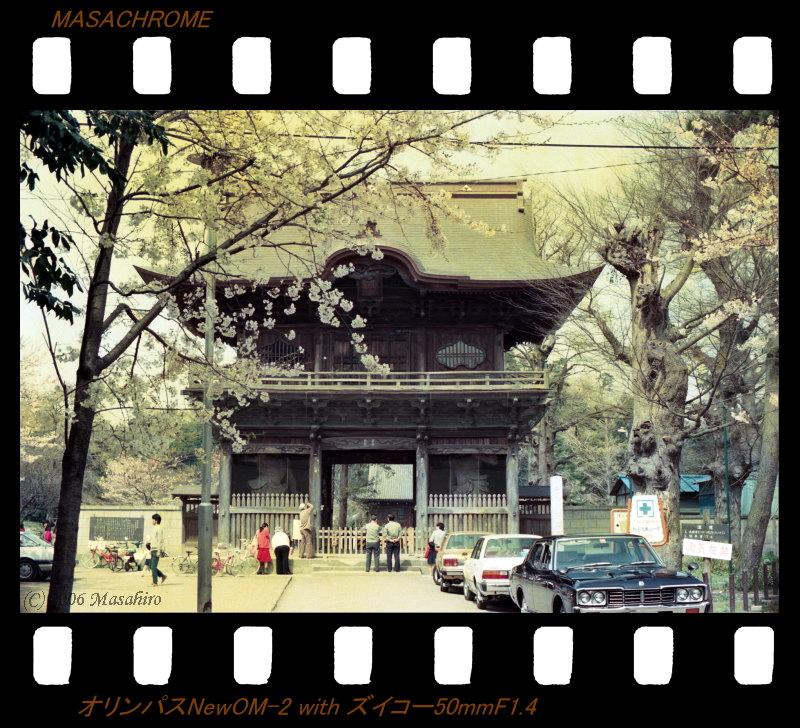 横浜の休日(番外編)_f0063363_21411815.jpg