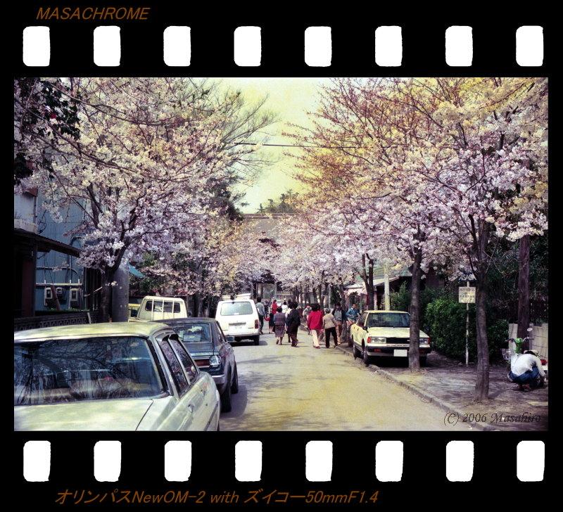 横浜の休日(番外編)_f0063363_2141454.jpg