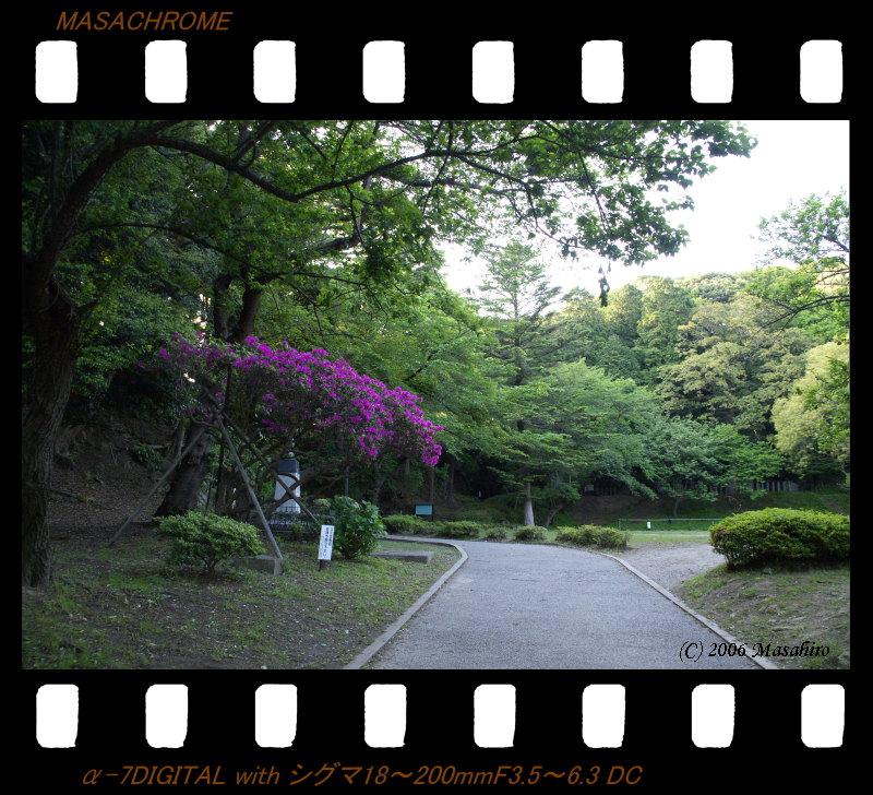 横浜の休日(番外編)_f0063363_21423718.jpg