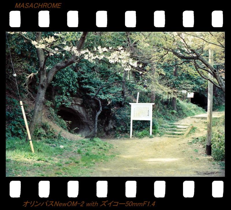 横浜の休日(番外編)_f0063363_2142470.jpg