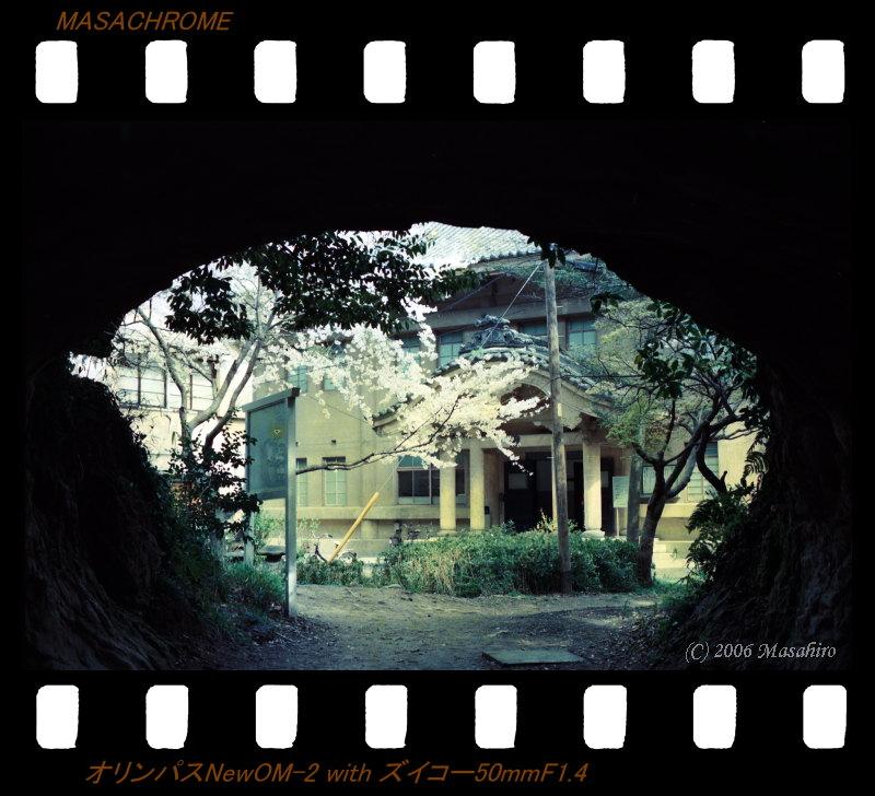 横浜の休日(番外編)_f0063363_21431873.jpg