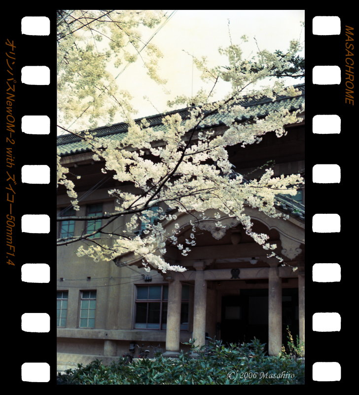 横浜の休日(番外編)_f0063363_21441522.jpg