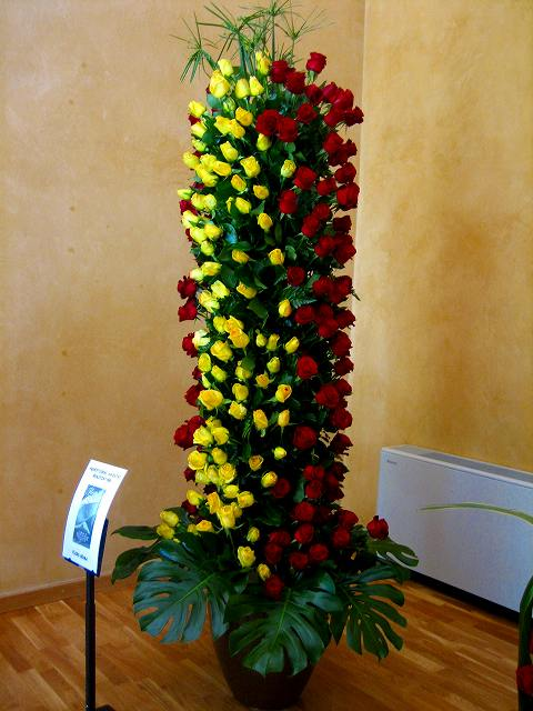 San Feliuのバラ展示会_b0064411_7261152.jpg