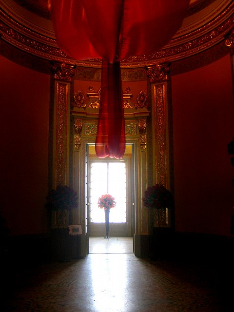 San Feliuのバラ展示会_b0064411_7282165.jpg
