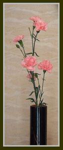 お花がいっぱい_c0073016_13203886.jpg