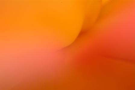 f0078127_0102520.jpg
