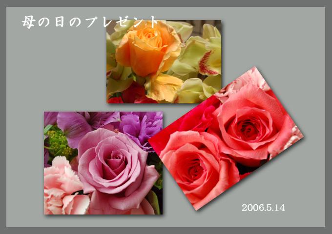 b0086765_045028.jpg