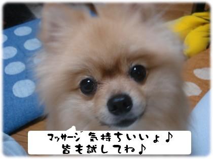 b0078073_0374468.jpg