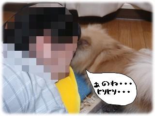 b0078073_133541.jpg