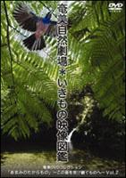 5/15 DVD島内販売_a0010095_052776.jpg