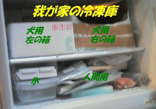 b0090201_17393160.jpg