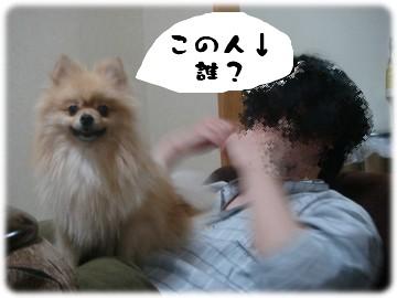 b0078073_1421374.jpg