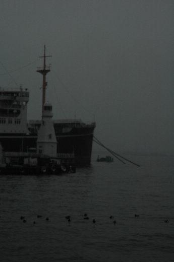 d0030597_124258.jpg