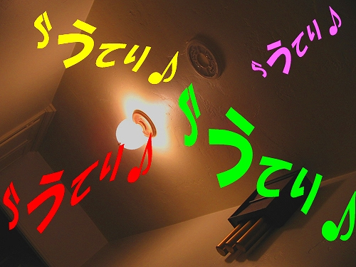 d0056879_1415387.jpg