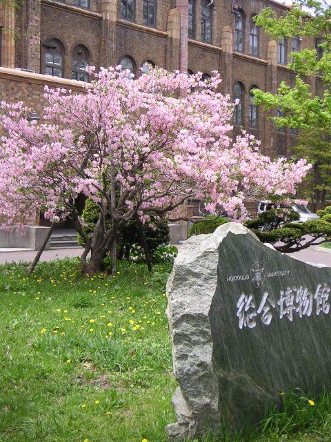 愛すべき日本という国を_c0025115_21351211.jpg