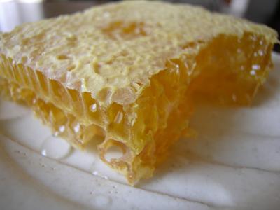 蜂の巣をまるごと食べる_b0062963_1383549.jpg