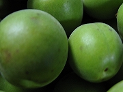 うめわいんの原料の「梅」がやってきました。_d0028135_171034100.jpg