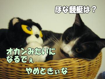 b0041182_0131910.jpg