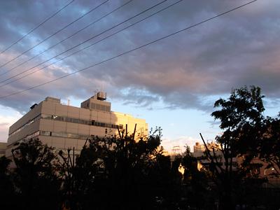 雨上がりの空_c0030685_221391.jpg