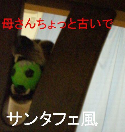 f0053952_10194653.jpg