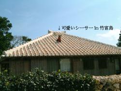 b0050768_165198.jpg