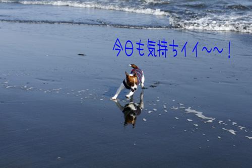 f0020777_22202859.jpg