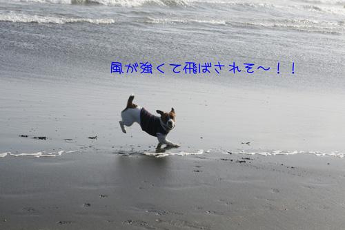 f0020777_222132100.jpg