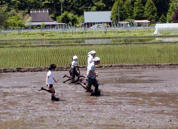 泥んこ競争_c0057390_23374360.jpg